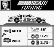 Play Bill Elliott's NASCAR Online