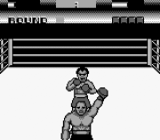 Play George Foreman's KO Boxing Online